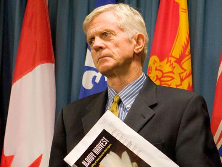 Дэвид Килгур, отчет, изъятие органов