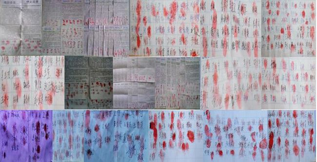 Фалуньгун, Китай, подписи